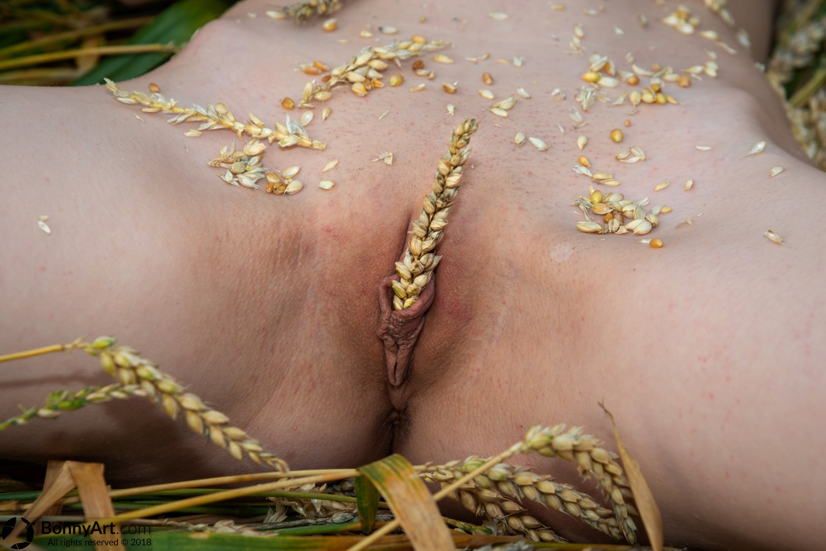 Pussy Holding Wheat with Labia